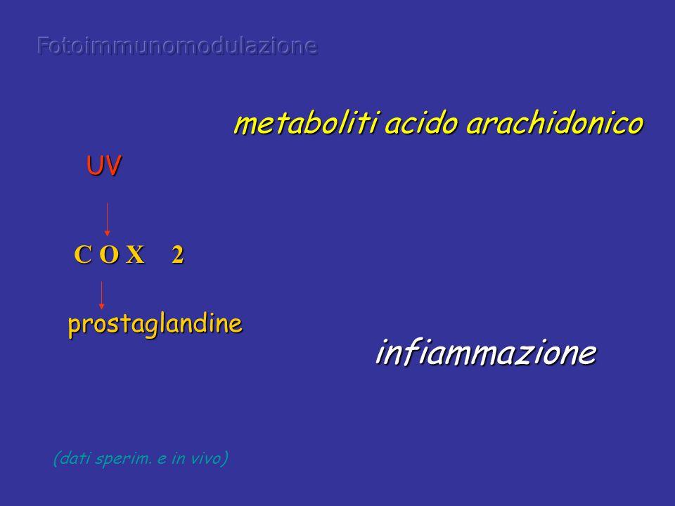 infiammazione metaboliti acido arachidonico UV C O X 2 prostaglandine