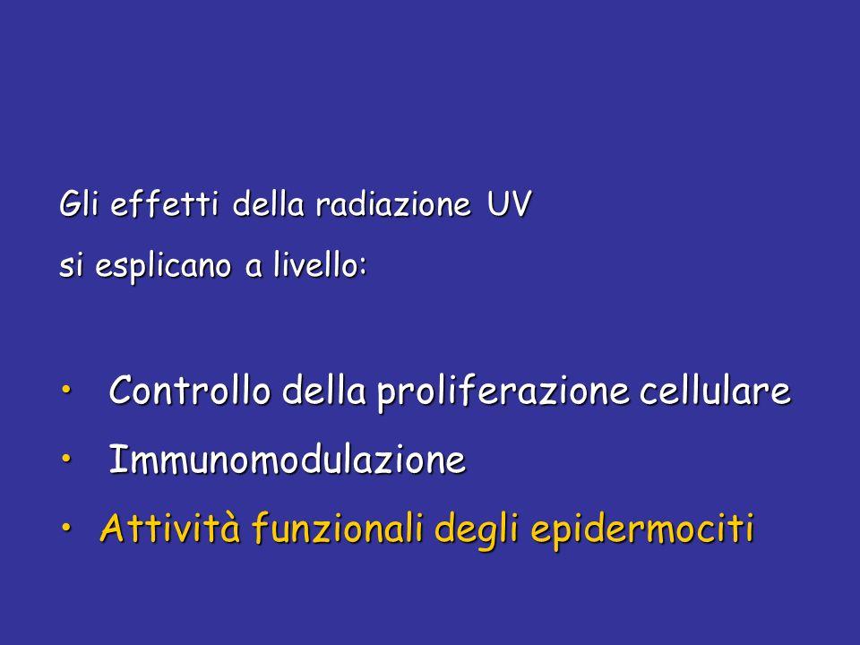 Controllo della proliferazione cellulare Immunomodulazione