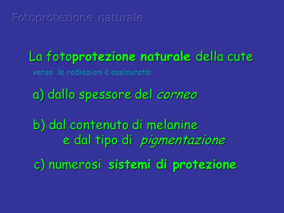 La fotoprotezione naturale della cute