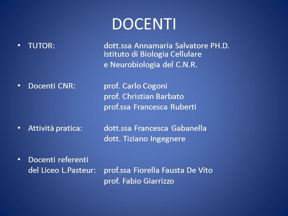 DOCENTI TUTOR: dott.ssa Annamaria Salvatore PH.D. Istituto di Biologia Cellulare. e Neurobiologia del C.N.R.