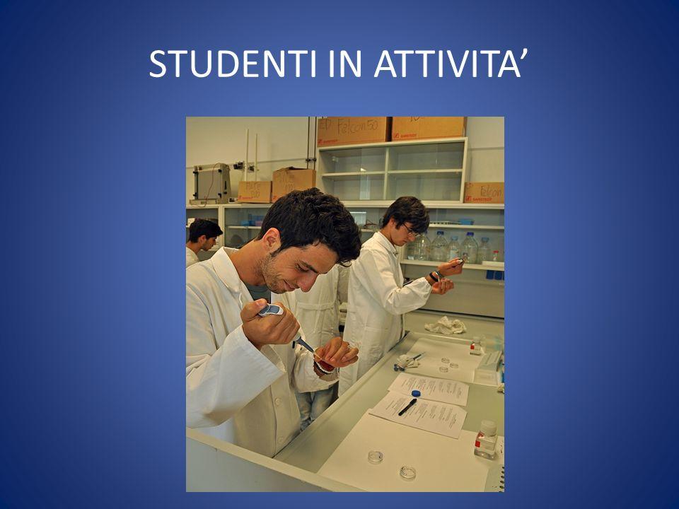 STUDENTI IN ATTIVITA'
