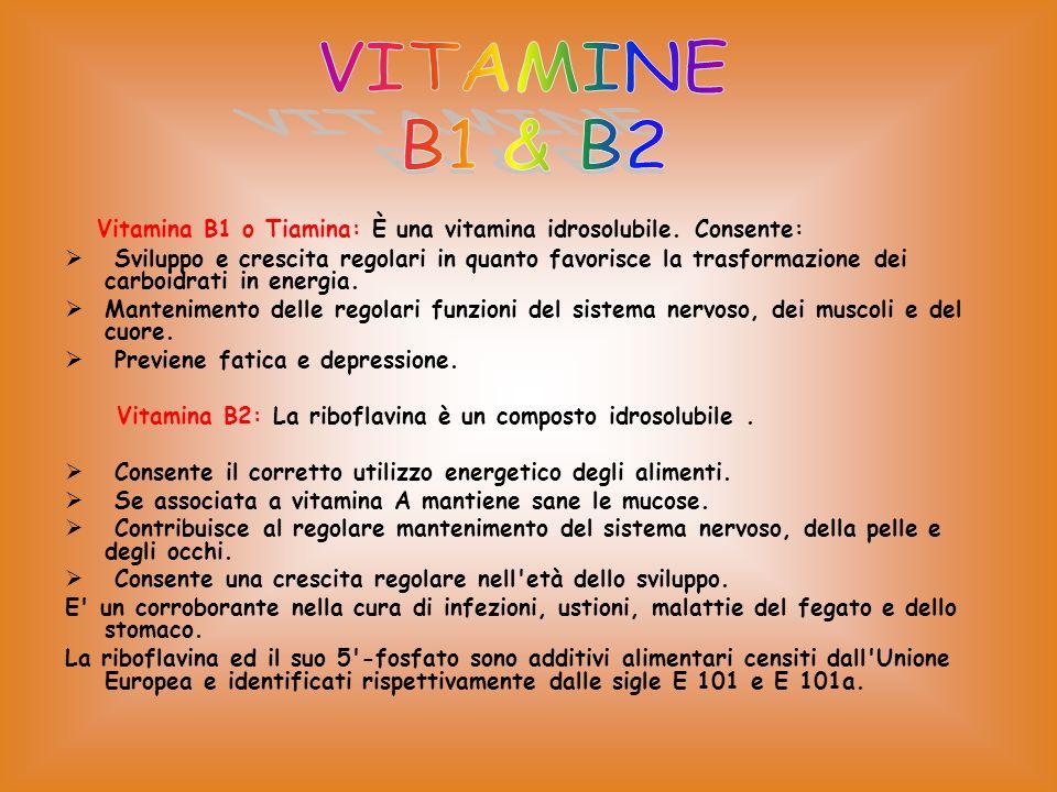 VITAMINE B1 & B2. Vitamina B1 o Tiamina: È una vitamina idrosolubile. Consente: