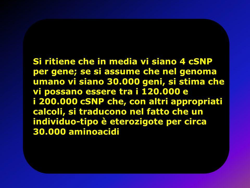 Si ritiene che in media vi siano 4 cSNP