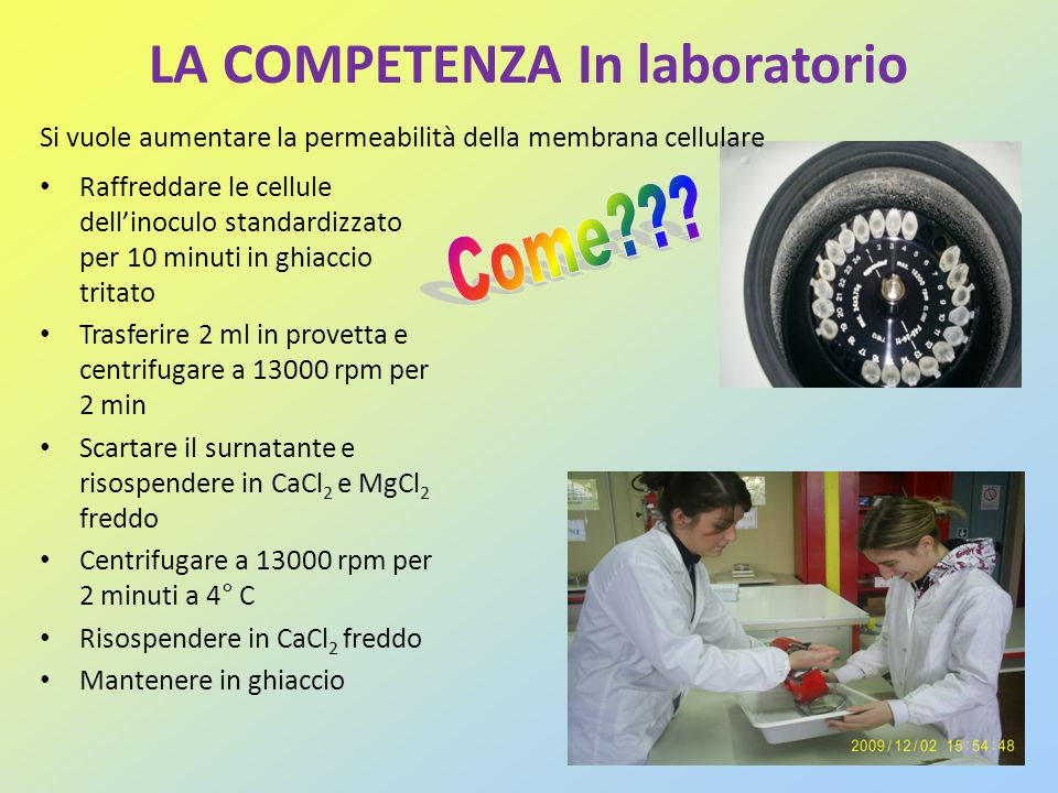 LA COMPETENZA In laboratorio