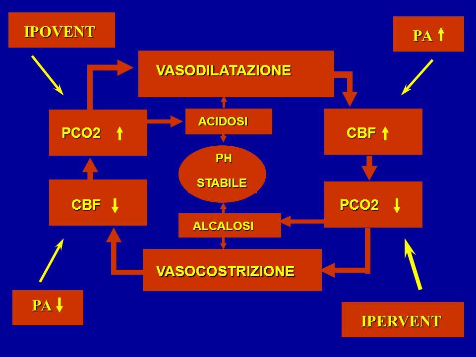 IPOVENT PA PA IPERVENT VASODILATAZIONE PCO2 CBF CBF PCO2