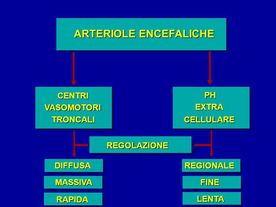 ARTERIOLE ENCEFALICHE