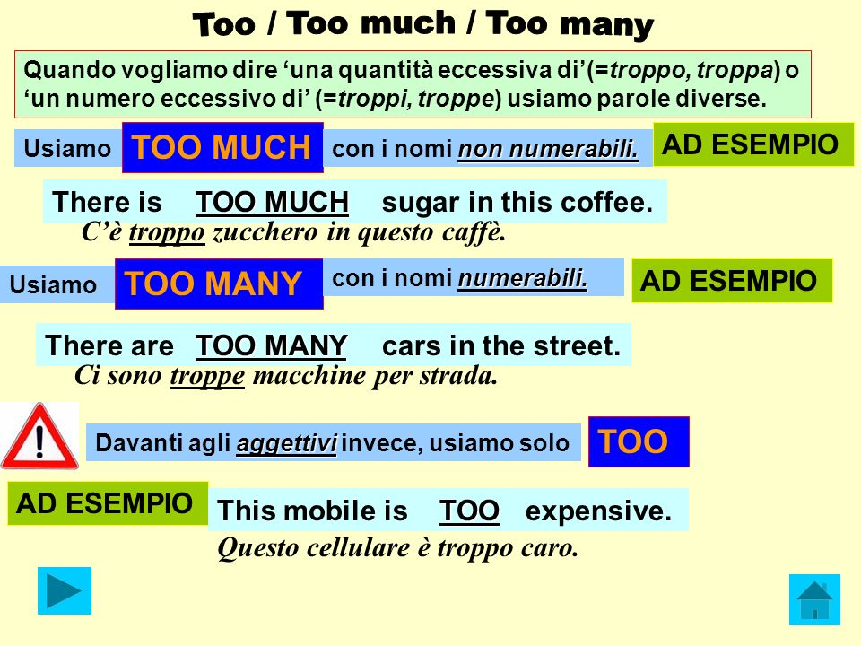 TOO MUCH TOO MANY TOO AD ESEMPIO There is TOO MUCH