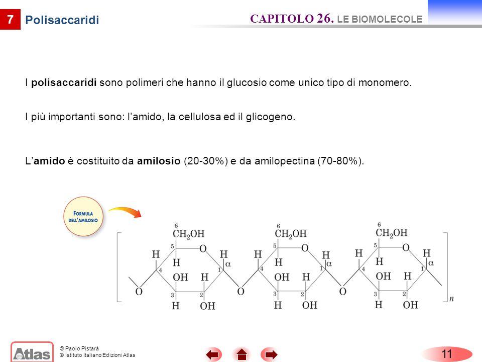 CAPITOLO 26. LE BIOMOLECOLE Polisaccaridi