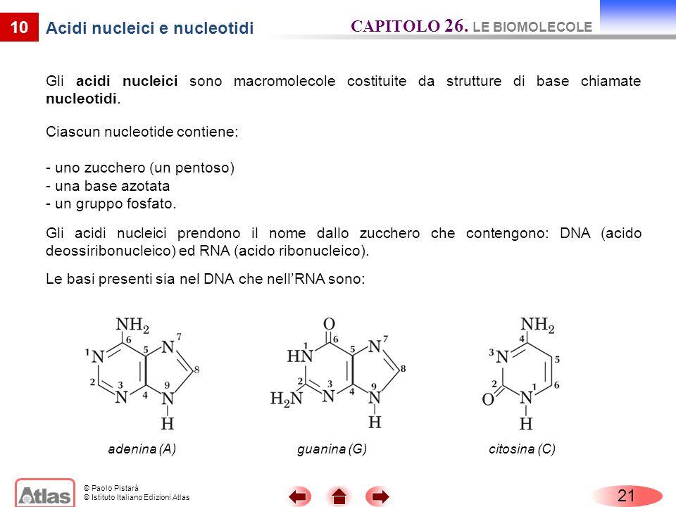 Acidi nucleici e nucleotidi