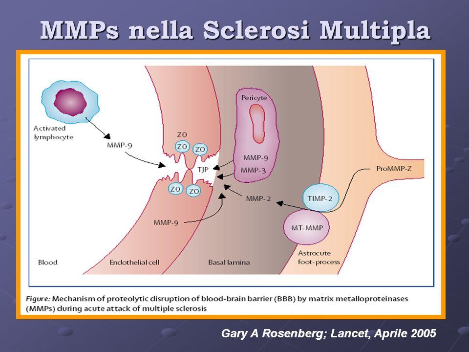 MMPs nella Sclerosi Multipla