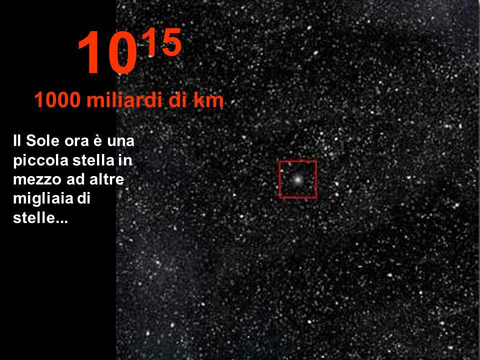 1015 1000 miliardi di km Il Sole ora è una piccola stella in mezzo ad altre migliaia di stelle...