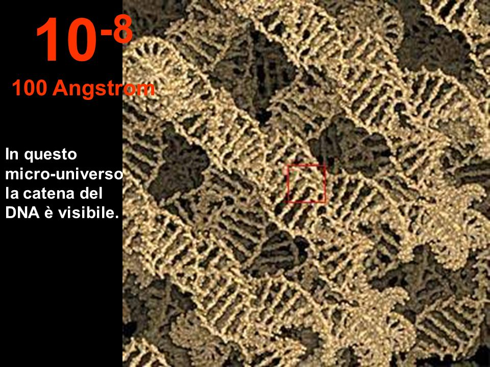 10-8 100 Angstrom In questo micro-universo la catena del DNA è visibile.