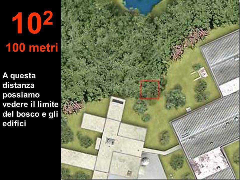 102 100 metri A questa distanza possiamo vedere il limite del bosco e gli edifici