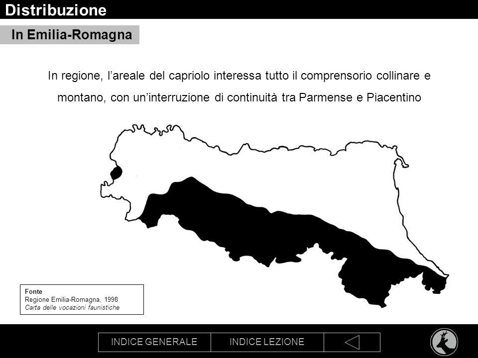 Distribuzione In Emilia-Romagna