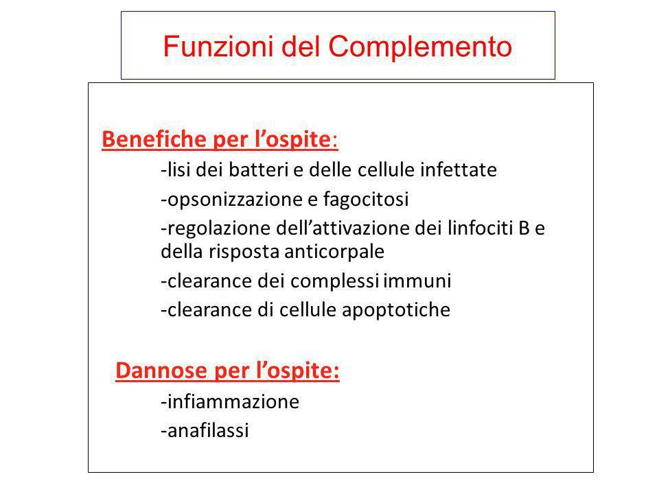 Funzioni del Complemento