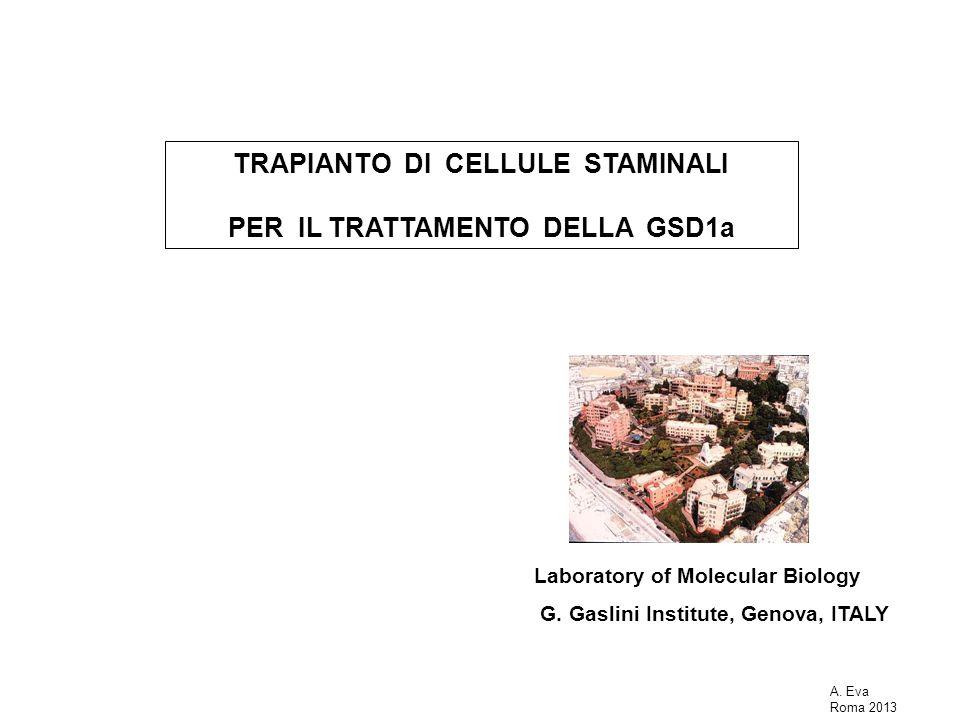 TRAPIANTO DI CELLULE STAMINALI PER IL TRATTAMENTO DELLA GSD1a
