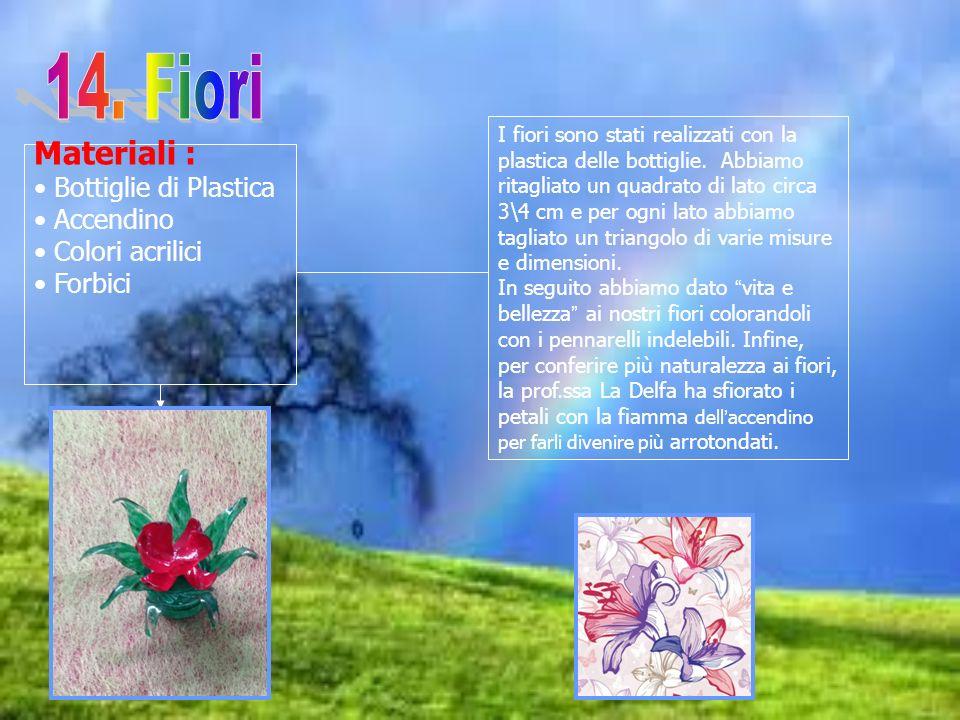 14. Fiori Materiali : Bottiglie di Plastica Accendino Colori acrilici