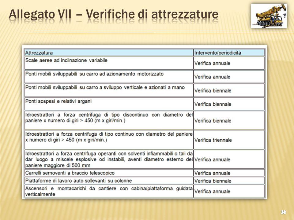 Allegato VII – Verifiche di attrezzature