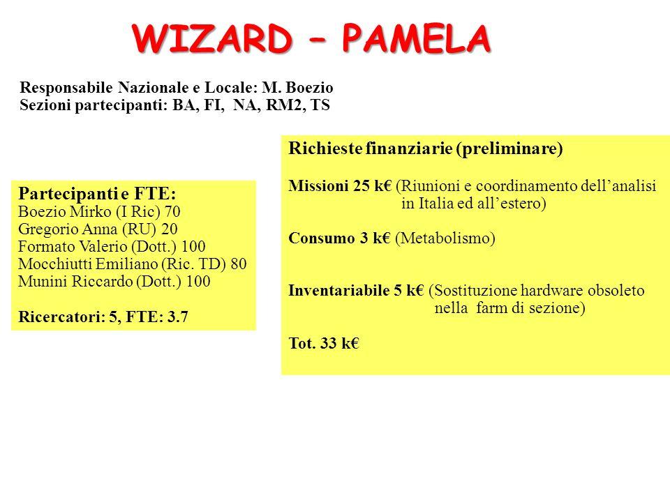 WIZARD – PAMELA Richieste finanziarie (preliminare)