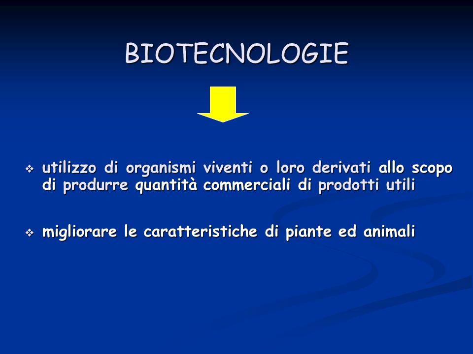 BIOTECNOLOGIE utilizzo di organismi viventi o loro derivati allo scopo di produrre quantità commerciali di prodotti utili.