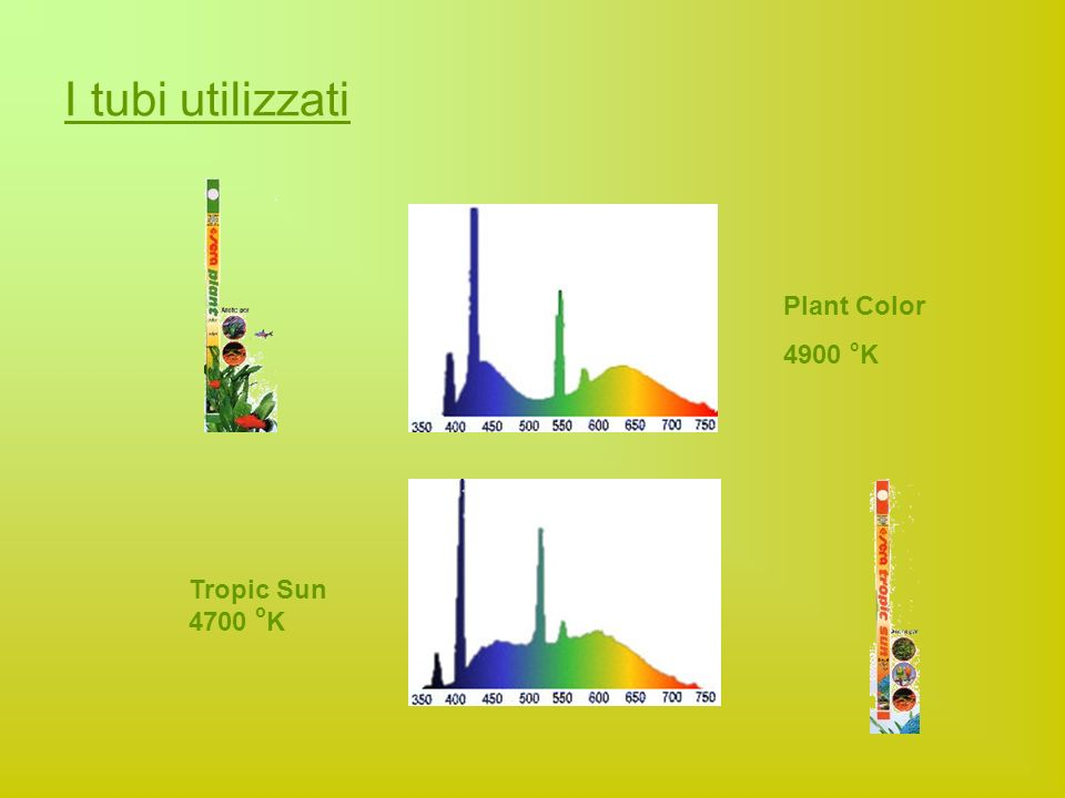 I tubi utilizzati Plant Color 4900 oK Tropic Sun 4700 oK