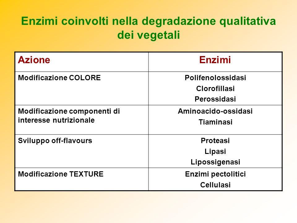Enzimi coinvolti nella degradazione qualitativa dei vegetali