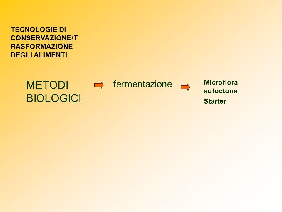 METODI BIOLOGICI fermentazione