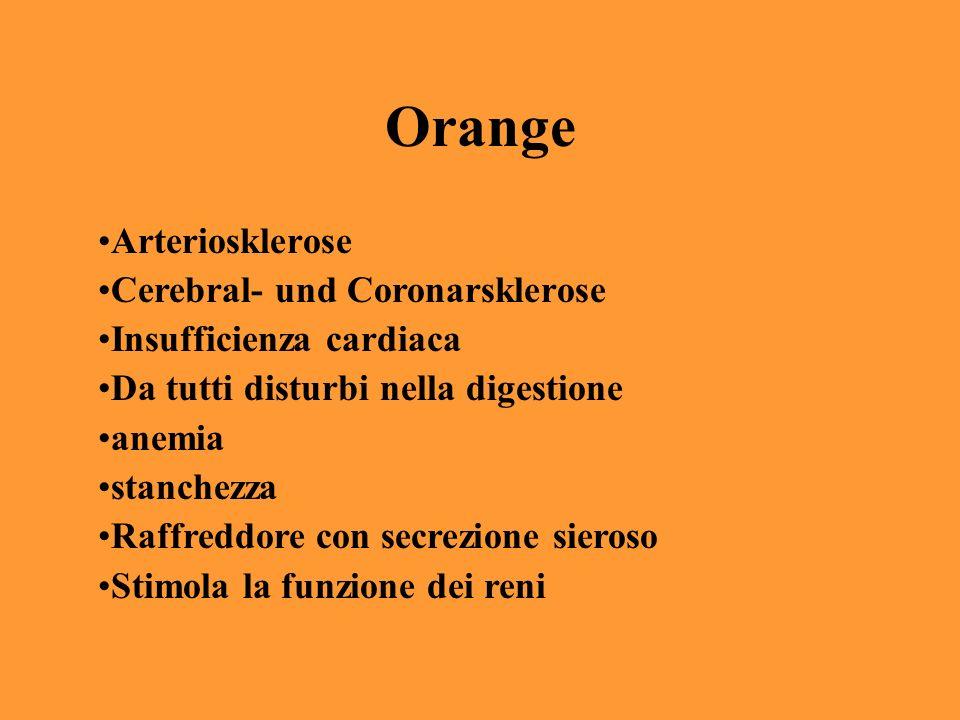 Orange Arteriosklerose Cerebral- und Coronarsklerose