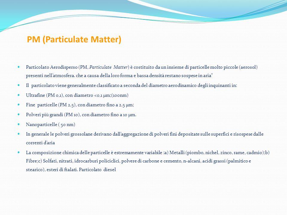 PM (Particulate Matter)