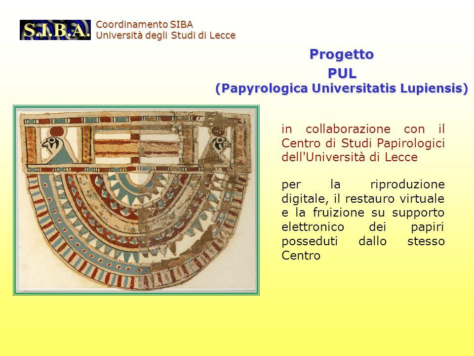 (Papyrologica Universitatis Lupiensis)
