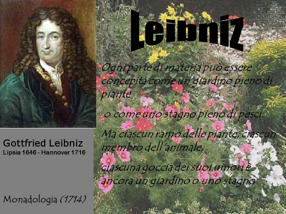 Leibniz Ogni parte di materia può essere concepita come un giardino pieno di piante. o come uno stagno pieno di pesci.