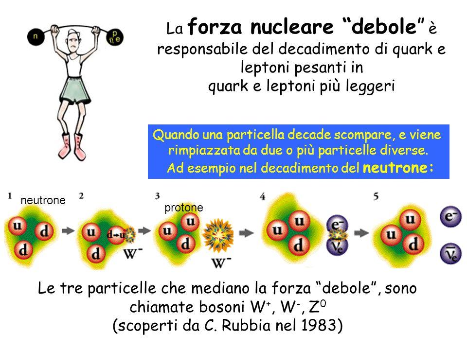 quark e leptoni più leggeri