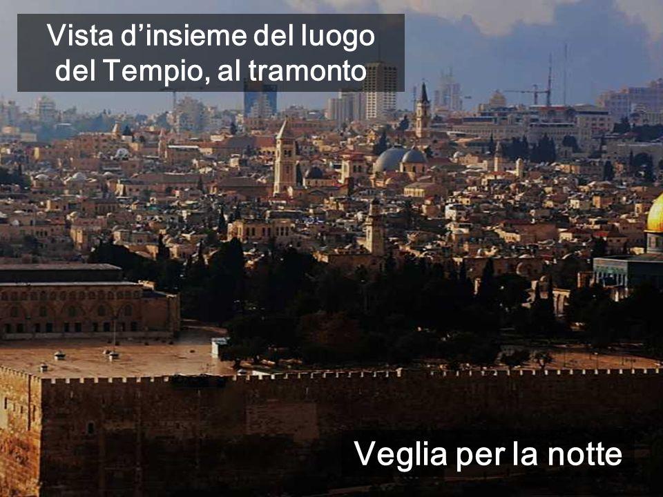 Vista d'insieme del luogo del Tempio, al tramonto