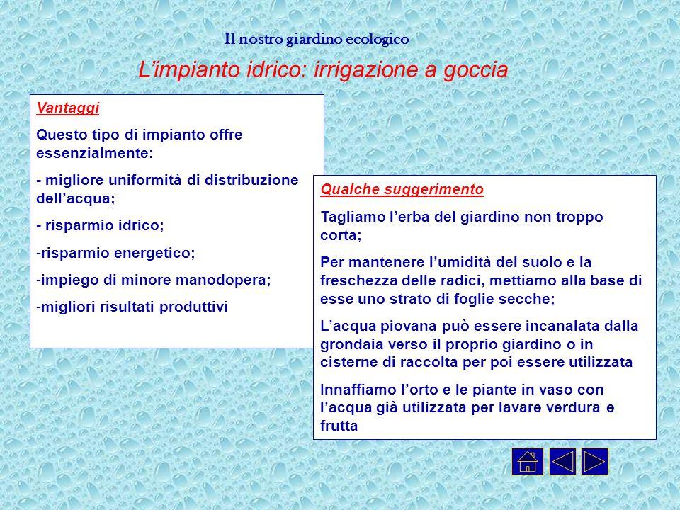 L'impianto idrico: irrigazione a goccia