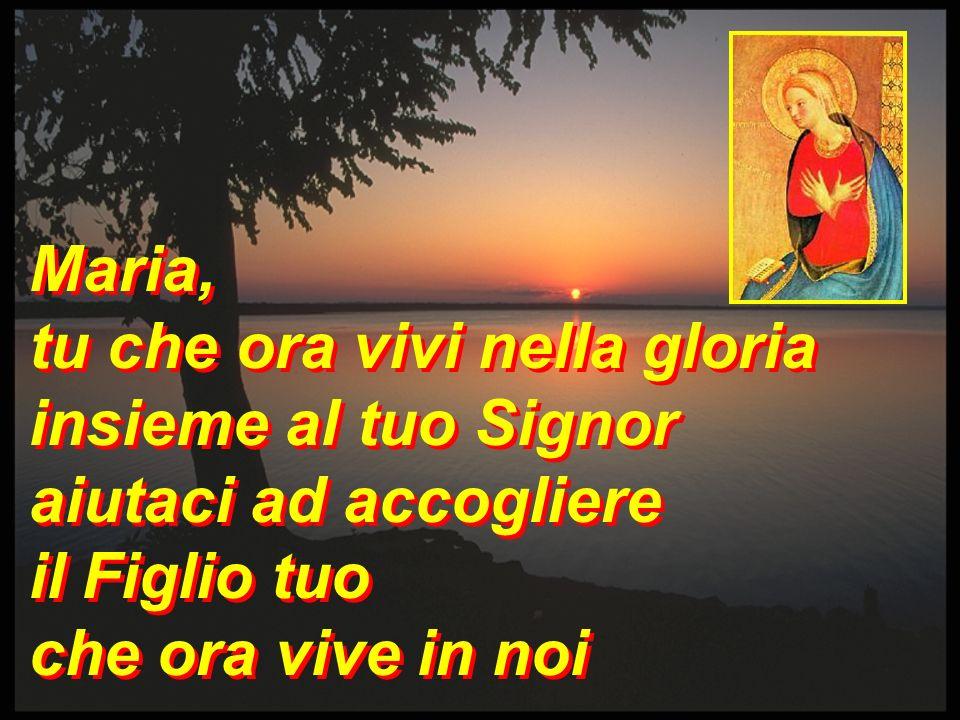 Maria,tu che ora vivi nella gloria.insieme al tuo Signor.