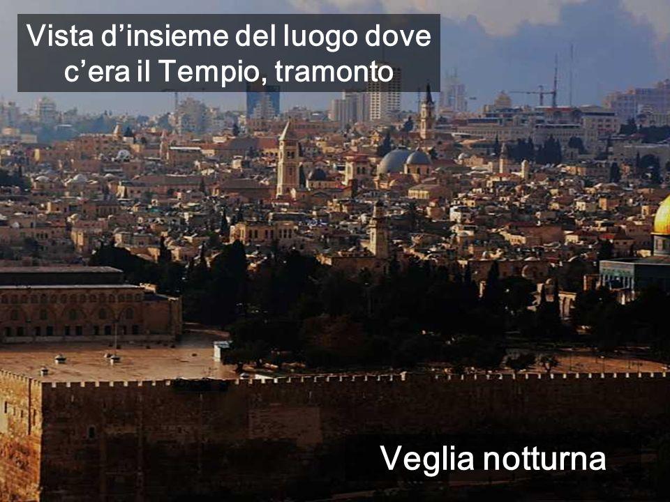 Vista d'insieme del luogo dove c'era il Tempio, tramonto