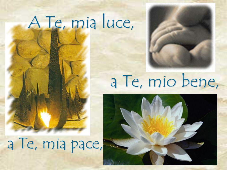 A Te, mia luce, a Te, mio bene, a Te, mia pace,