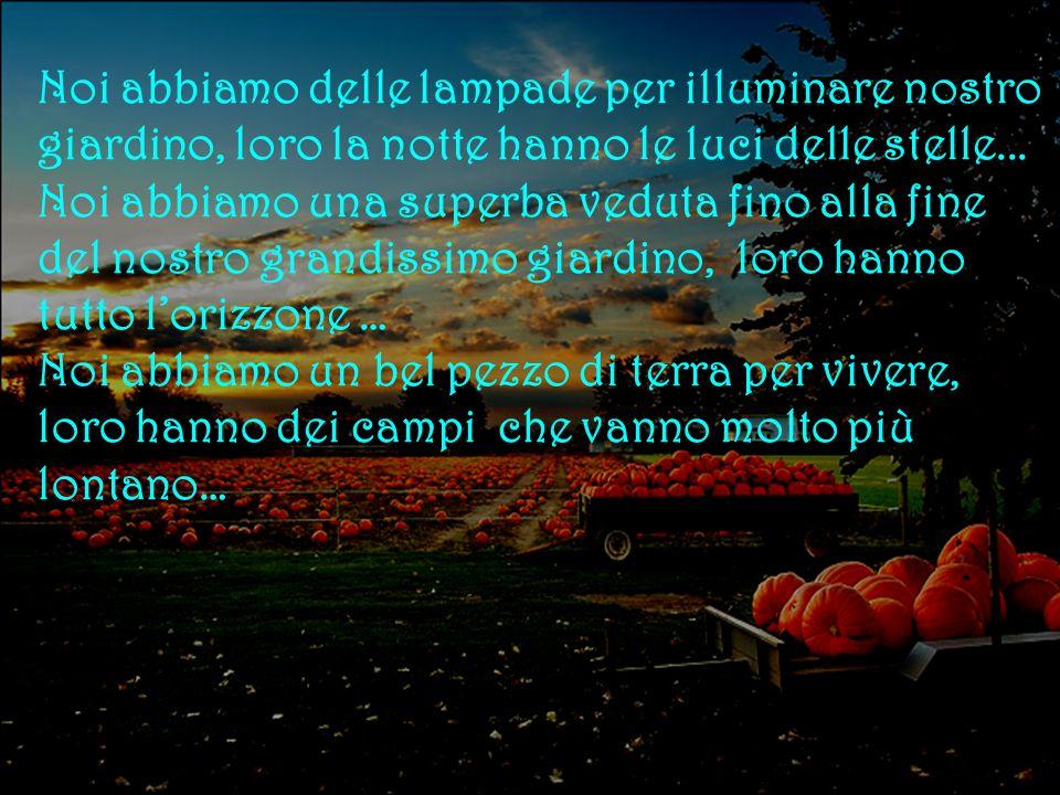 Noi abbiamo delle lampade per illuminare nostro giardino, loro la notte hanno le luci delle stelle...
