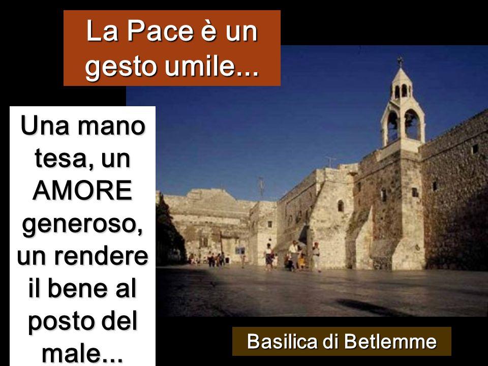 La Pace è un gesto umile... Una mano tesa, un AMORE generoso, un rendere il bene al posto del male...