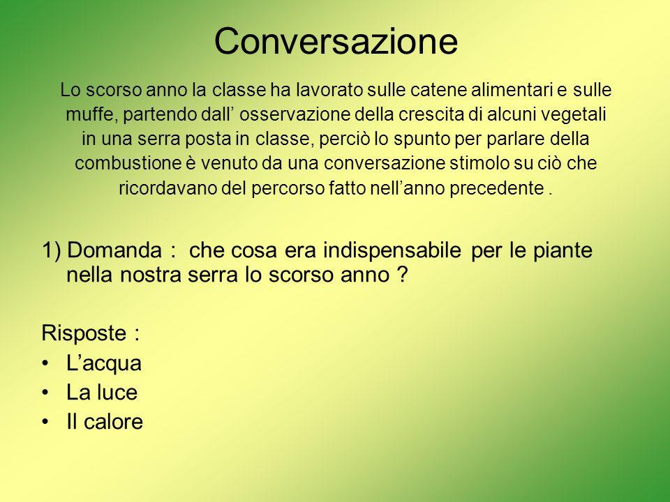 Conversazione Lo scorso anno la classe ha lavorato sulle catene alimentari e sulle.