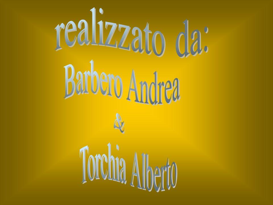 realizzato da: Barbero Andrea & Torchia Alberto