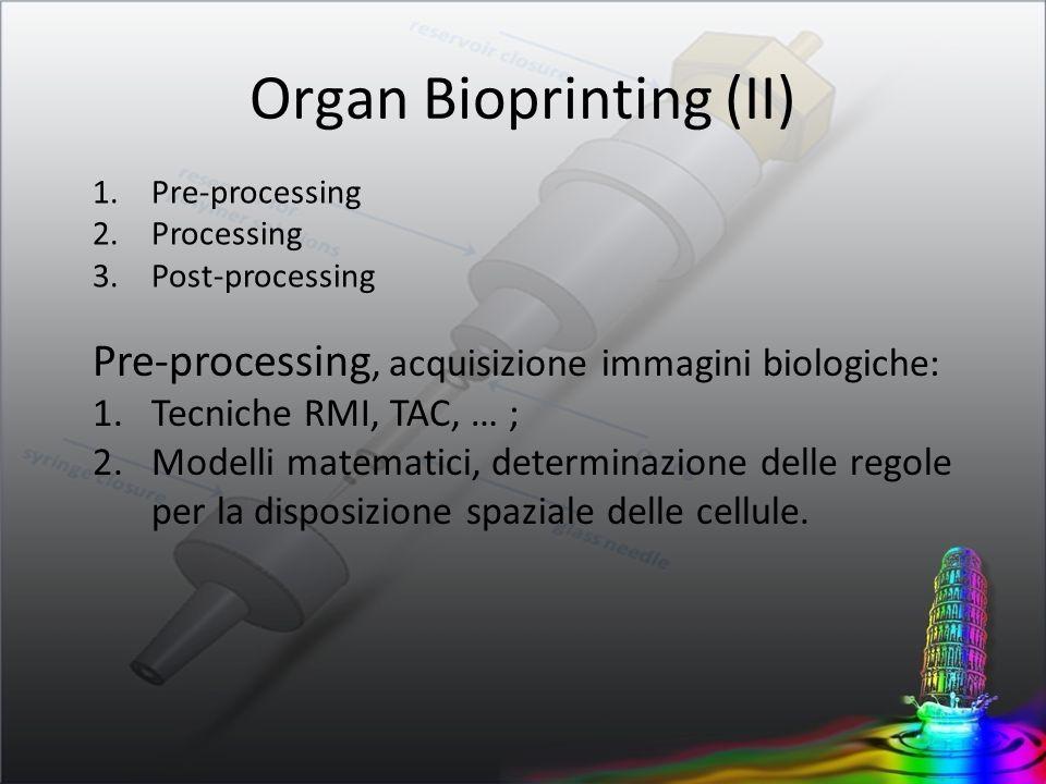 Organ Bioprinting (II)