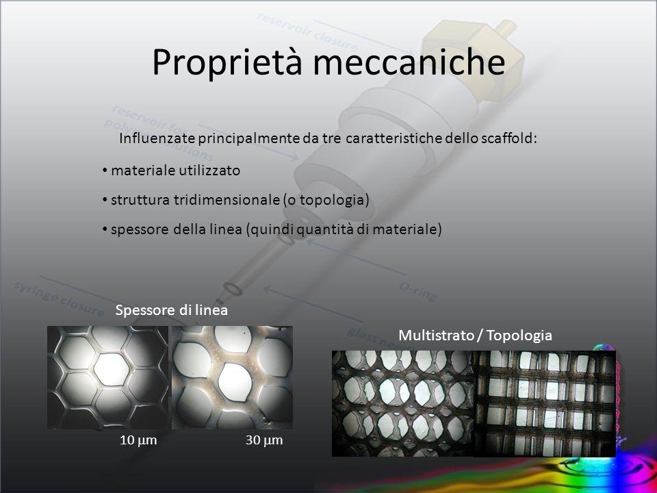 Proprietà meccaniche Influenzate principalmente da tre caratteristiche dello scaffold: materiale utilizzato.