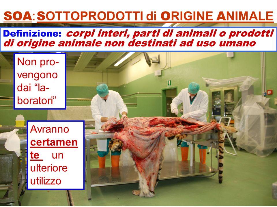 SOA: SOTTOPRODOTTI di ORIGINE ANIMALE