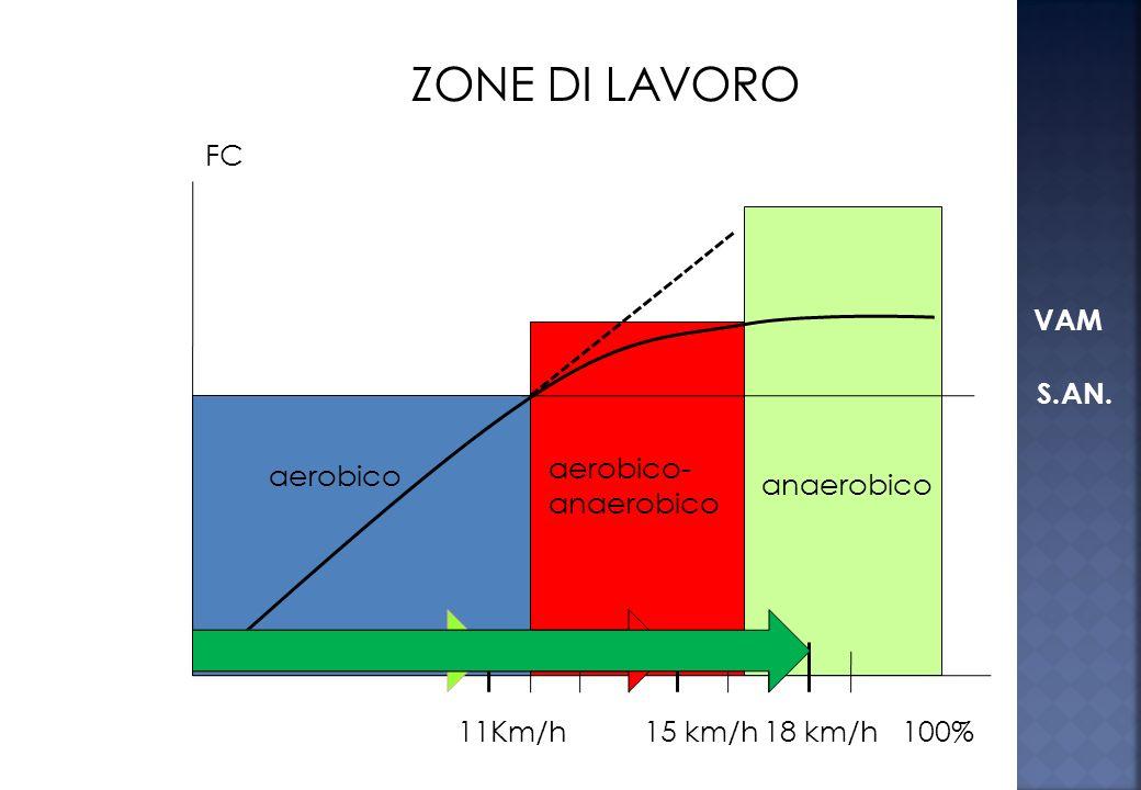 ZONE DI LAVORO FC VAM S.AN. aerobico-anaerobico aerobico anaerobico