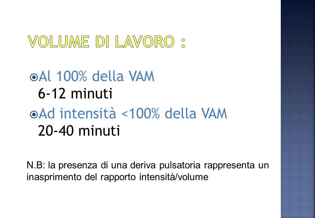 Volume di lavoro : Al 100% della VAM 6-12 minuti