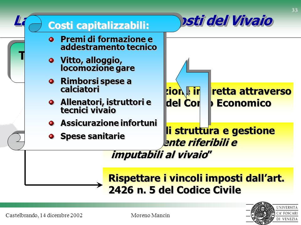 La capitalizzazione dei Costi del Vivaio