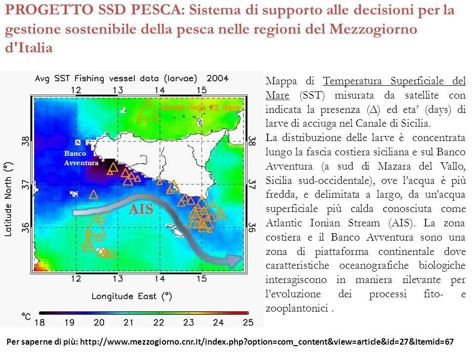 PROGETTO SSD PESCA: Sistema di supporto alle decisioni per la gestione sostenibile della pesca nelle regioni del Mezzogiorno d Italia