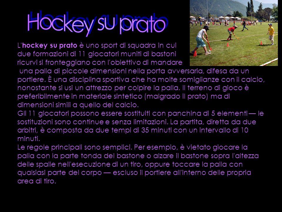 Hockey su prato L hockey su prato è uno sport di squadra in cui