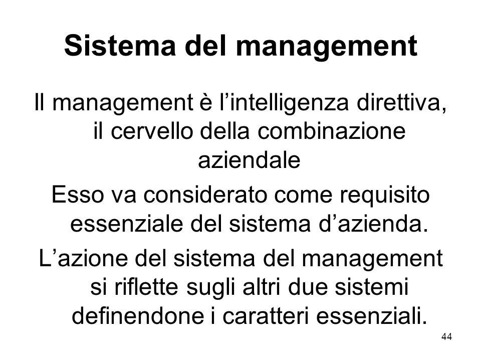 Sistema del management